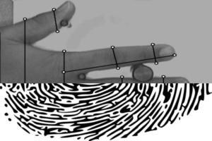 Comparison between fingerprint and hand geometry identification - Part 2
